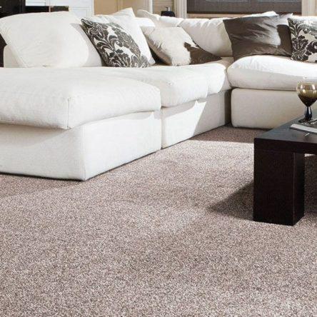 Liza Carpet