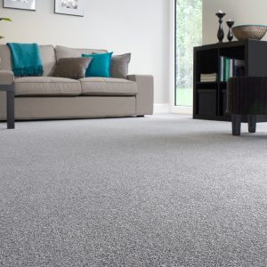 Shepherd heathers carpet living room image