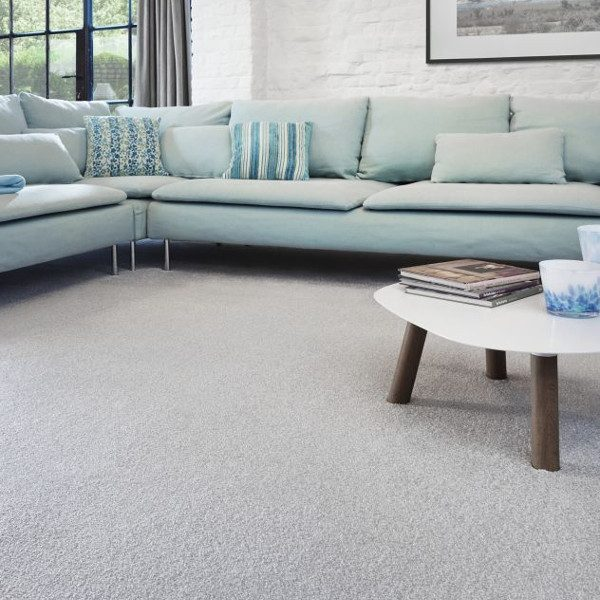 Superior Cozy Carpet Room Image