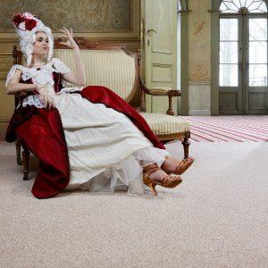 Noble Saxony Carpet Main Room Image