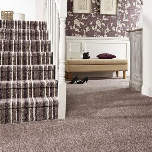 Superior Saxony Carpet and Superior Stripes Stairs and Hall Image