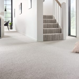 Noble Saxony Striped Carpet and Soft Noble Carpet Room Image