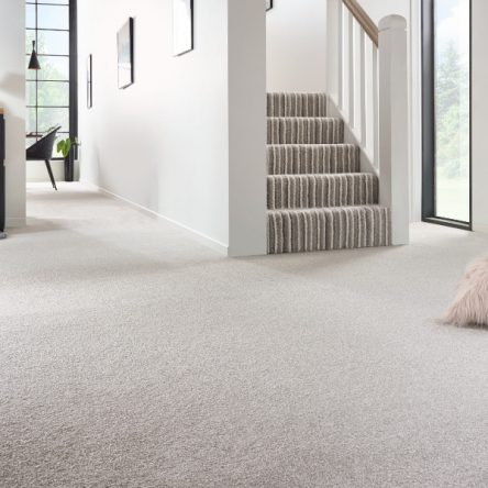 Soft Noble Saxony Striped Carpet
