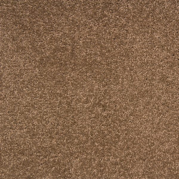 Dallas 72 Mocha Swatch Image