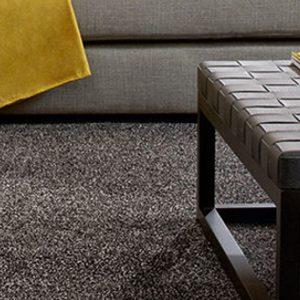 Persian Carpet Medium Grey Carpet Room Image