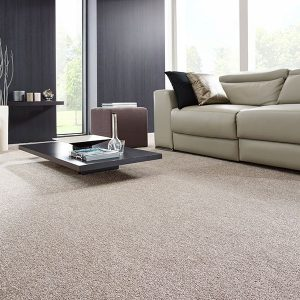 Canyon Twist Carpet Room Image