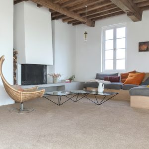 Simba Carpet Room Image