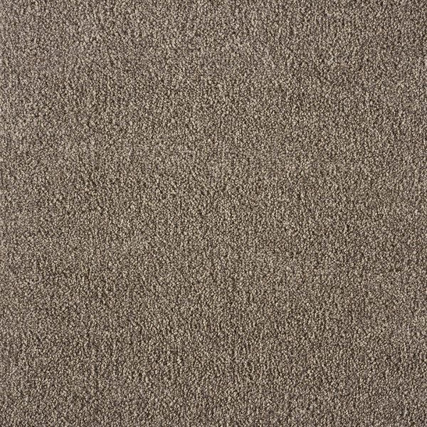 Monsoon 303-Oyster-swatch-Image