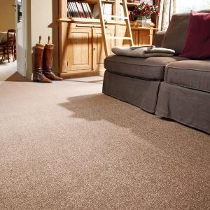 Splendid-Saxony-Carpet-825-Room_image