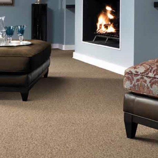 Kingston Carpet Room Image 2