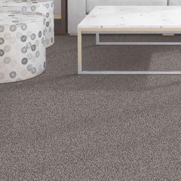 Kingston Carpet Room Image